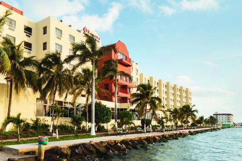 Hotel and casino in belize city onlinecasino one